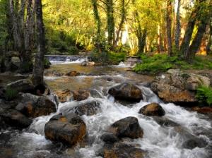 Paisagem Natural/Água fonte de vida