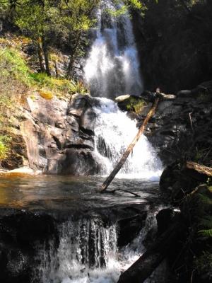 Paisagem Natural/A força da natureza
