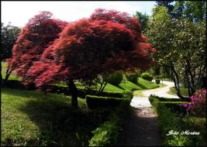 Paisagem Natural/Cores da natureza