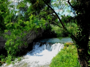 Paisagem Natural/Na margem do rio a ver a cascata