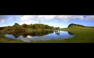 /Madeira - Lagoa do Fanal – II
