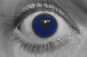 Macro/Eye