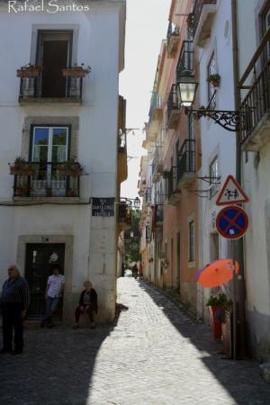 Paisagem Urbana/A Rua das Flores de Santa Cruz - Castelo
