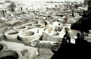 Gentes e Locais/Morocco Revisited #14