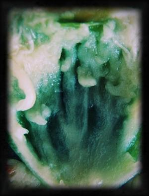 Abstrato/Alienated I