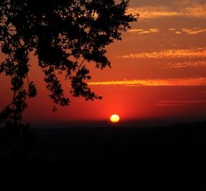 /Por do sol especial
