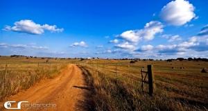 Paisagem Natural/Por terras alentejanas