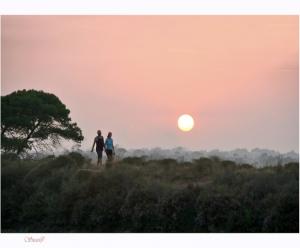 Gentes e Locais/Nova terra... Paraíso