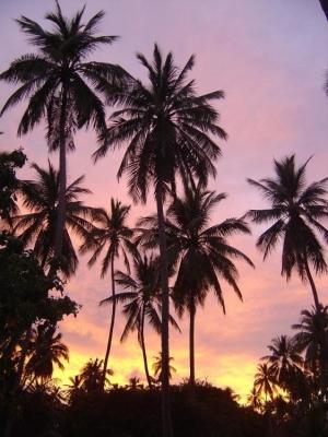 Paisagem Natural/O céu pintado...