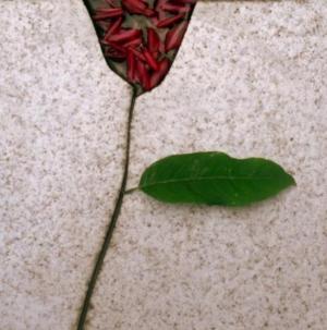 Outros/Flor Azulejada.