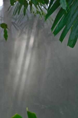 Paisagem Natural/Oceanário