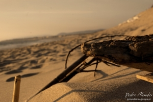 Outros/perde-te na praia