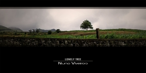 Paisagem Natural/Lonely tree