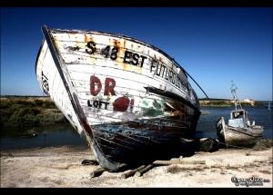 Outros/.:: Future Sea ::.