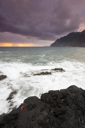 Paisagem Natural/Live ocean