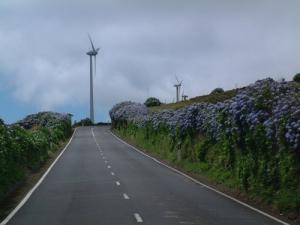 /Parque Eólico ( São Jorge- Açores)