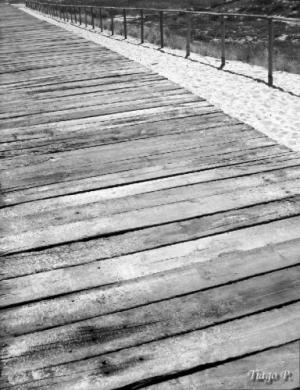 /Caminho Sobre Dunas