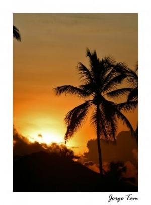 /Tropicos e Sol...