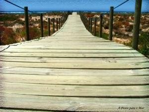 Paisagem Natural/A Ponte para o Mar