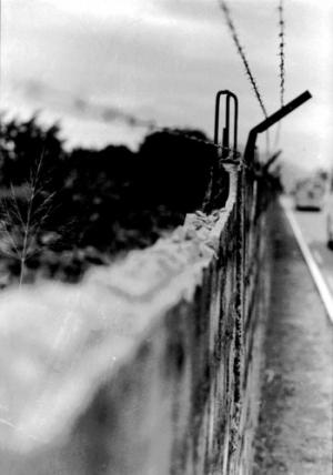 /O muro