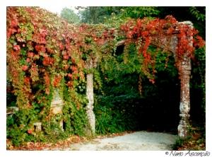 Gentes e Locais/Jardim de Outono