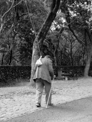 /O velho Pescador