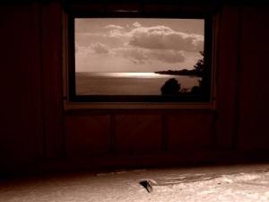 /Paisagem na janela
