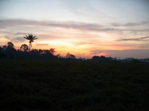Outros/Entardecer na Amazônia