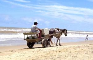 Paisagem Natural/Na praia