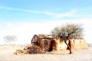 Paisagem Natural/Monte em ruinas.