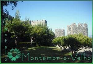 Outros/Castelo de Montemor-o-velho