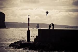 """Gentes e Locais/""""Nós e o mar"""""""