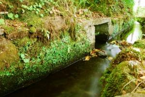 Paisagem Natural/A Magia da Água