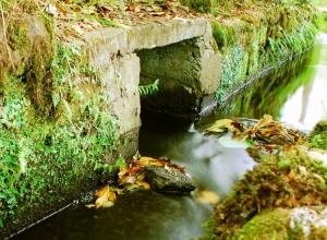 Paisagem Natural/A Magia da Água mais perto!