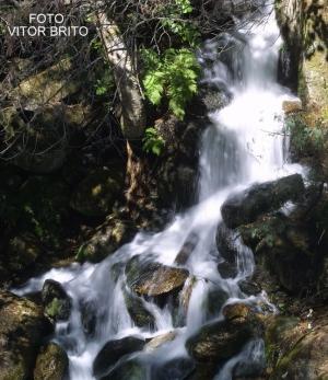 Paisagem Natural/O Silêncio da Água