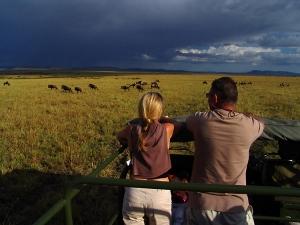/Safari, Masai Mara, Quênia