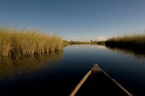/BOTSWANA;Delta do OKAVANGO ao fim da tarde;Maio 20