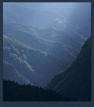Paisagem Natural/As misteriosas florestas do Priolo