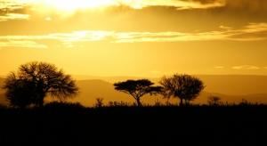 Paisagem Natural/Entardecer em África