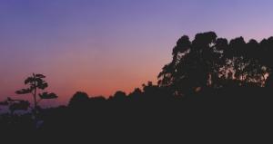 Paisagem Natural/Cores de fim de tarde