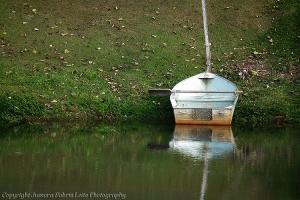 /Espera em águas mansas