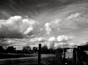 /Queria ser nuvem...
