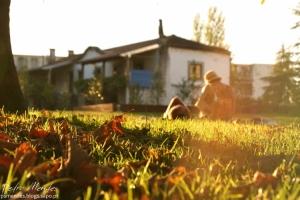 Gentes e Locais/the last days of sun