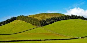 /Ilha Terceira