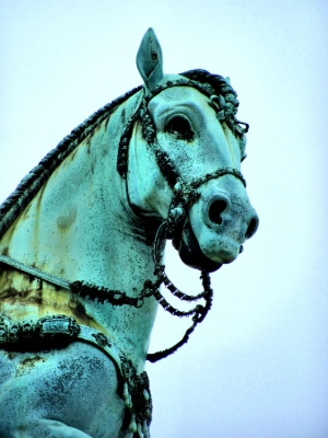 Paisagem Urbana/Cavalinho cavalão