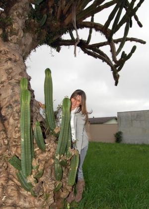 Paisagem Natural/cactus gigante