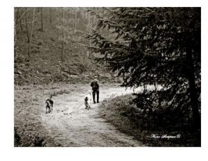Fotojornalismo/-caminhos de um pastor...-