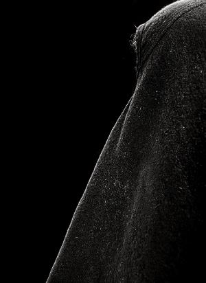 Abstrato/.