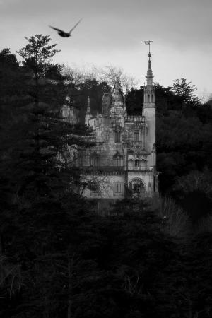 História/Wonderland
