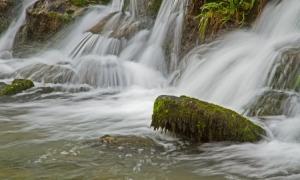 Paisagem Natural/No meio da água...